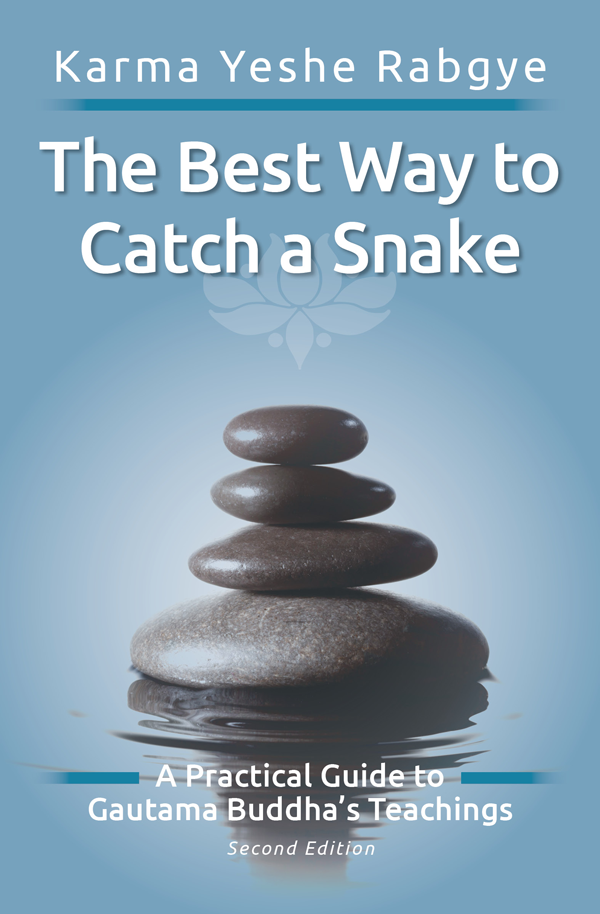 he Best Way to Catch a Snake – A Practical Guide to the BUDDHA'S Teachings, by Karma Yeshe Rabgye